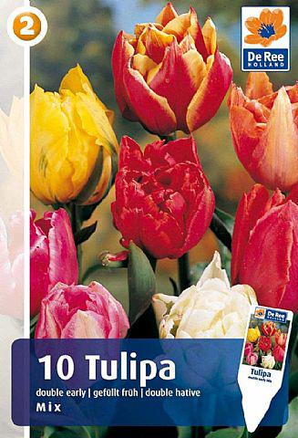 Tulipan Double Early Mix, Løgblanding